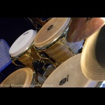 Massimo Rizzo World Percussion 05.JPG